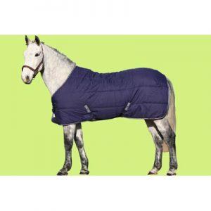 HORSE IRELAND UNDER RUG