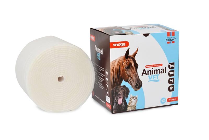animal vet