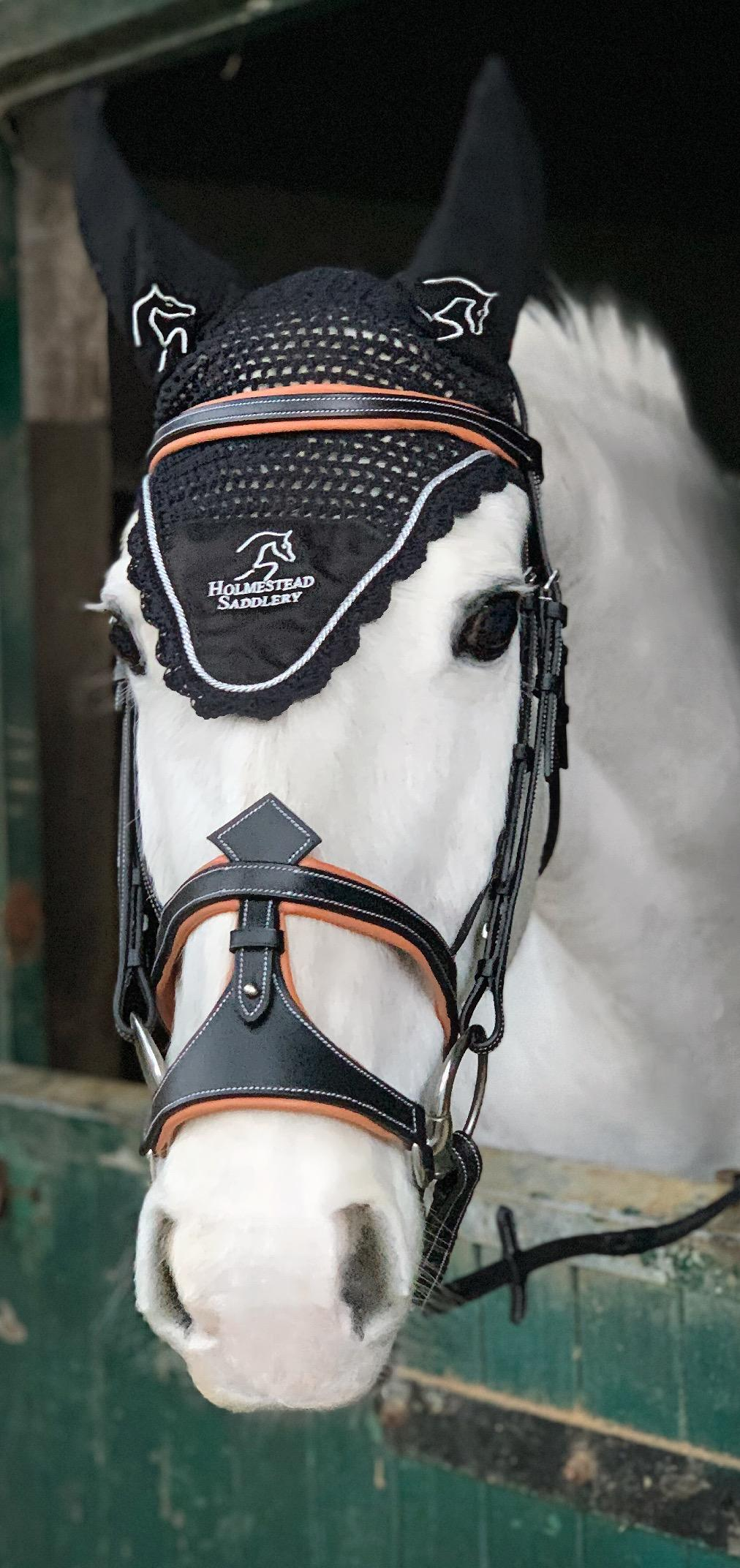 sale! 50% off fiorianna jump bridle with reins $ 153 51 $ 76 76