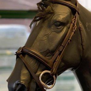 Bridles Archives - Holmestead Saddlery | Best Tack Store